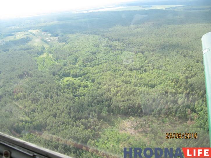Выяўлялі пашкоджаныя ўчасткі лесу аблётам