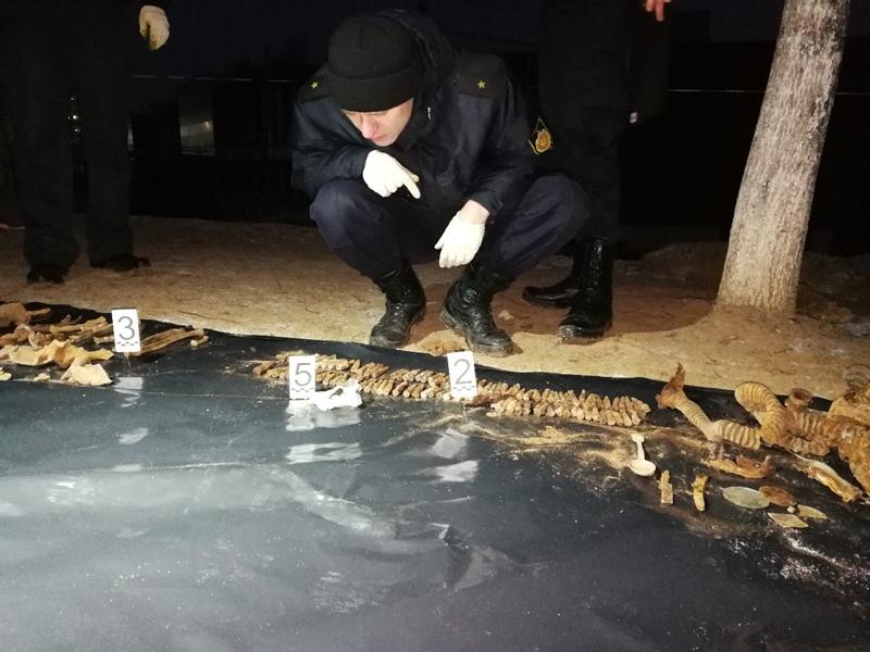 У Гродне на месцы будучага гандлёвага комплексу «Triniti» будаўнікі знайшлі парэшткі салдат