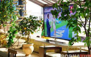 Футбол на полі і на вялікім экране. Кафэ на стадыёне ў Гродне чакаюць вялікія перамены