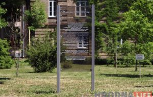 Власти Гродно: Ботанического сада в парке Жилибера не будет