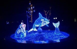 Праздник к нам приходит: в Гродно начинают включать новогоднюю иллюминацию