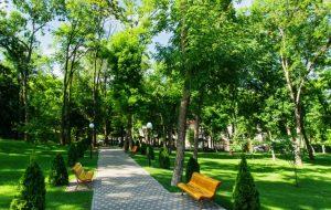 """В Гродно собирают подписи за создание парка напротив ТЦ """"Oldcity"""". Но его там не будет"""