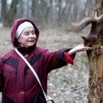 Виноваты люди? В Румлёвском парке спасли белку с перебитыми лапками