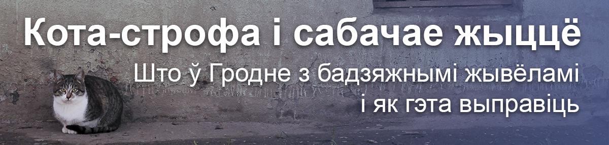 Галоўная
