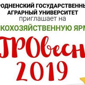 «Агравясна - 2019». Сельскагаспадарчы кірмаш