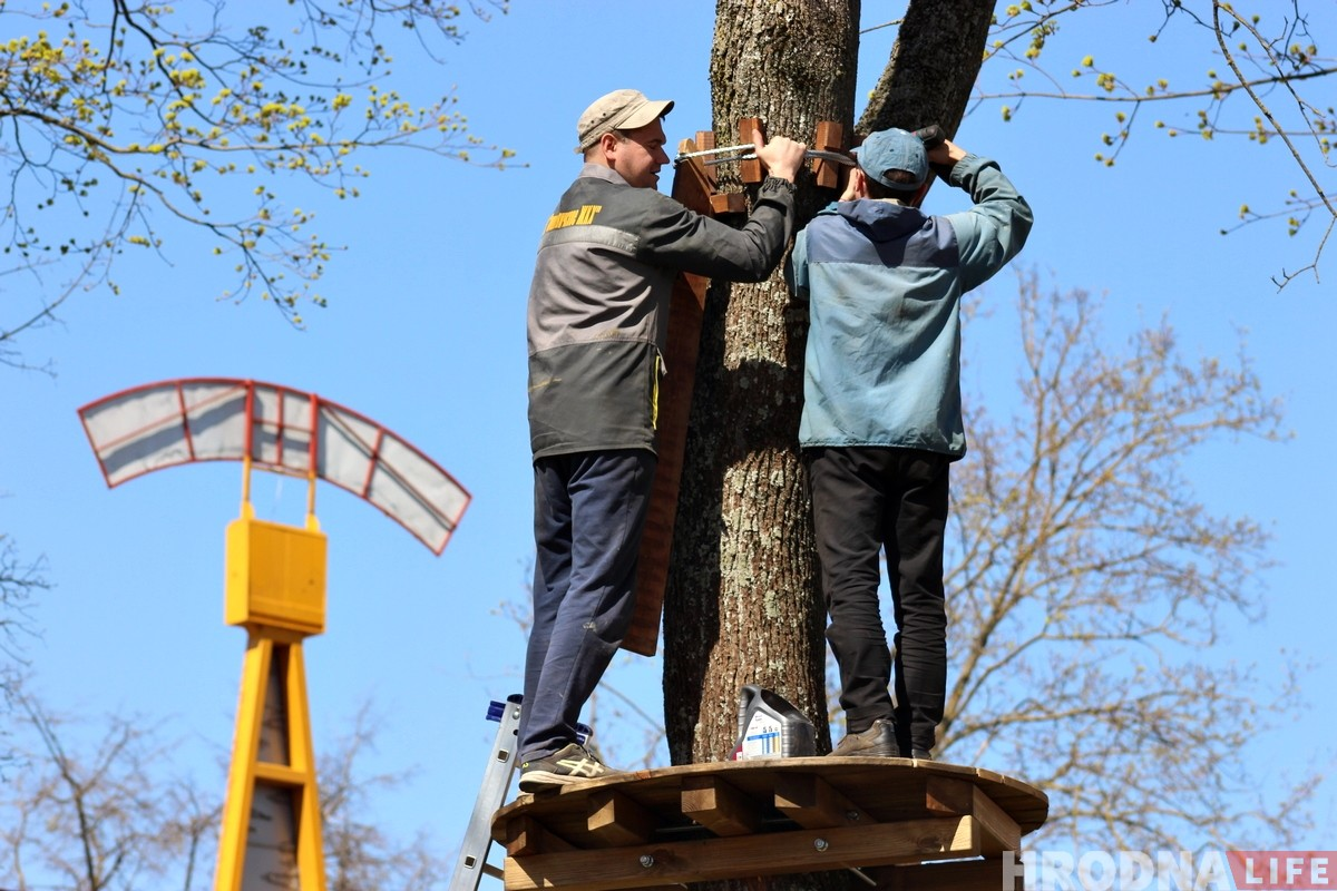У парку Жылібера ствараюць вяровачны гарадок. Абяцаюць, што дрэвы не пацерпяць