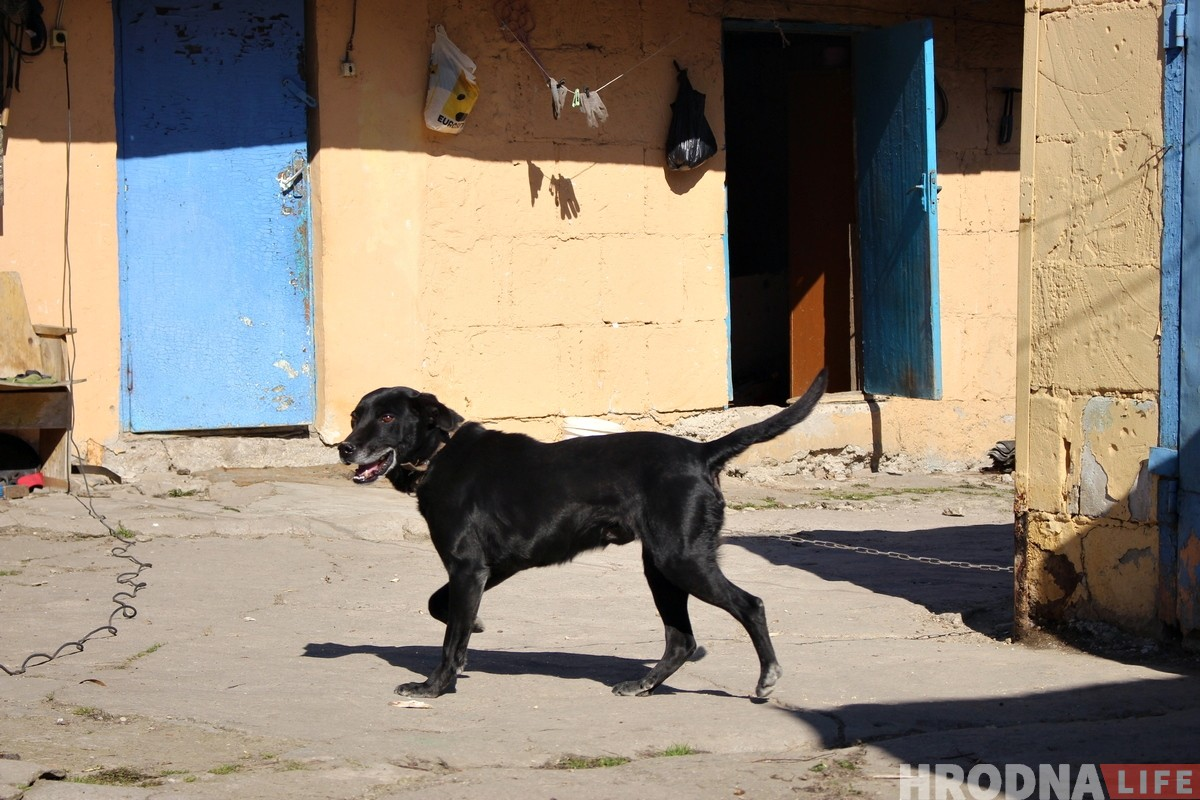 «Успеть до понедельника». Как жители бывшей деревни Девятовка готовятся к сносу