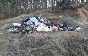 В Гродненском районе большинство садоводческих товариществ не разделяют мусор