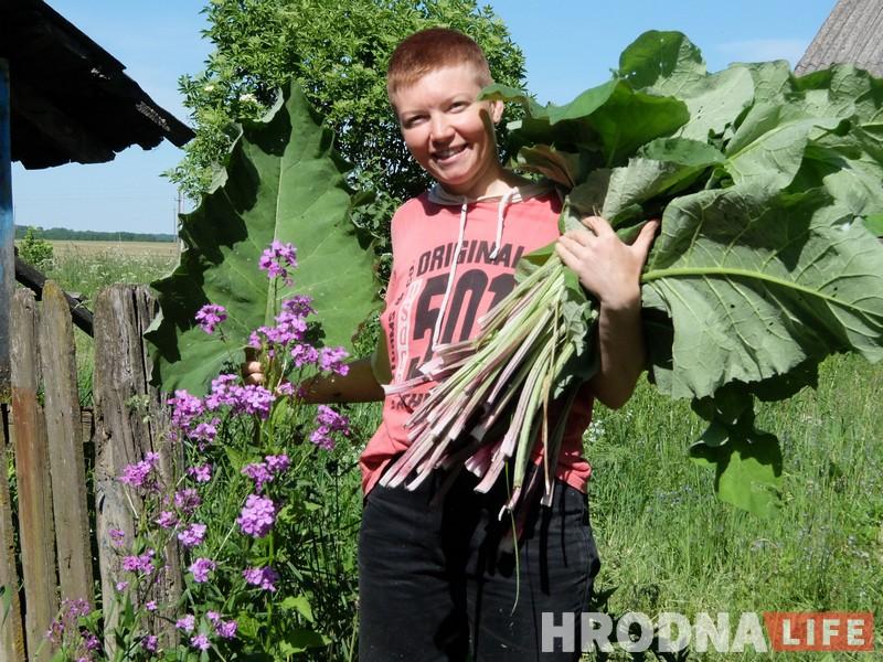 Трава ля дома: гродзенка 5 гадоў гатуе з пустазелля і гатова падзяліцца рэцэптамі