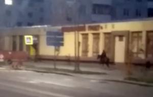 Вышел из-за угла и поскакал: гродненцы обсуждают человека на чёрном коне