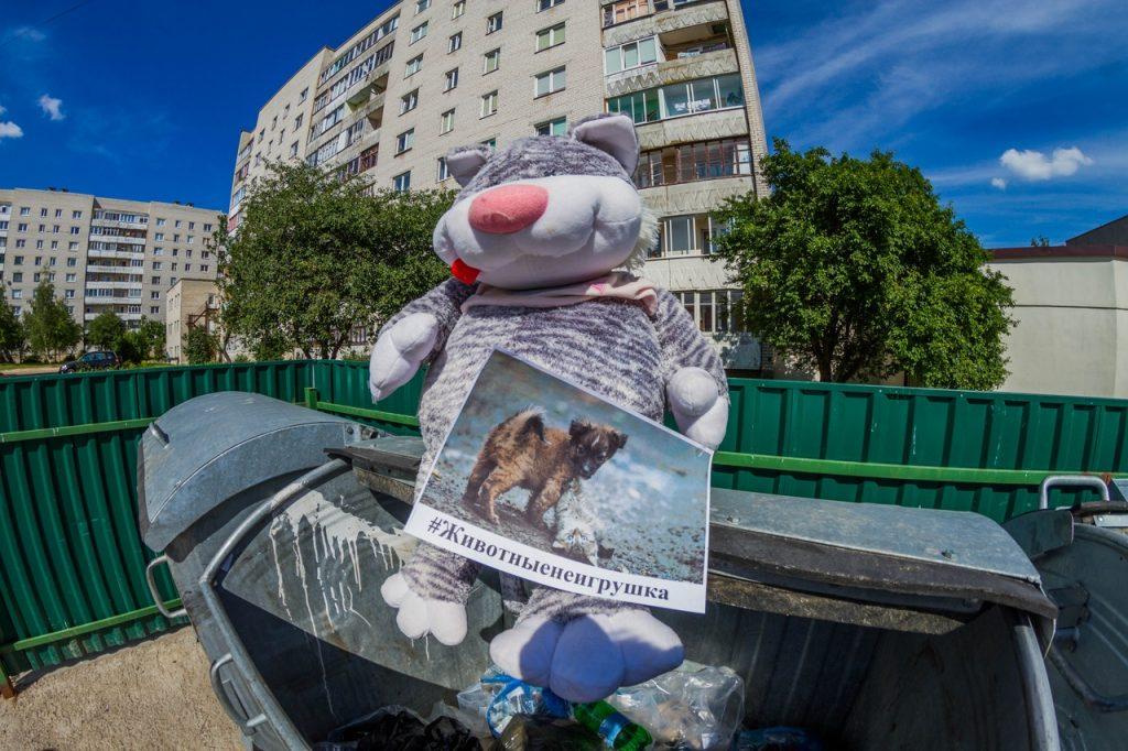 В Гродно выкидывают на мусорки плюшевые игрушки, чтобы поддержать бездомных животных