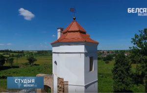 Белый замок Ольшанский с высоты птичьего полета