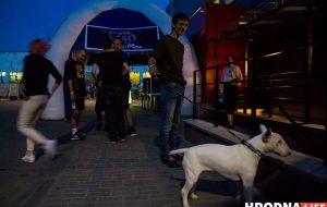 В Гродно открылся бар Crazy Dog: смотри фото с первой вечеринки