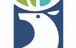 бренд гродно логотип брэнд Гродна лагатып