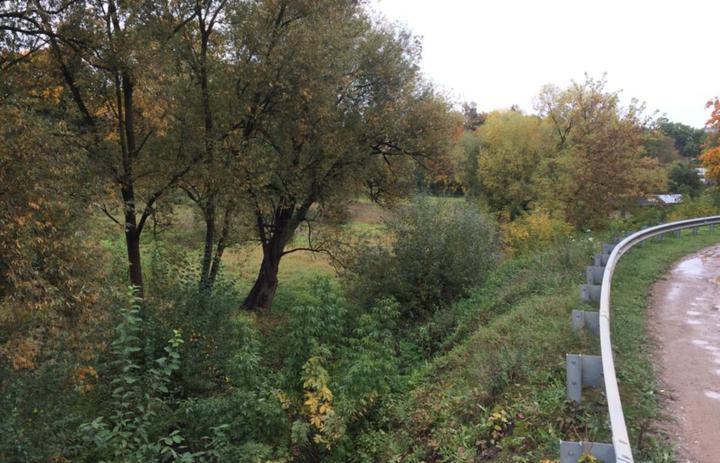 «Дикая» долина Городничанки занимает огромную площадь всердце города иникак неиспользуется вгородской среде