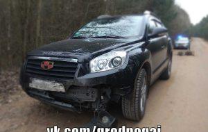 Под Гродно дикий кабан выбежал под автомобиль и стал причиной аварии
