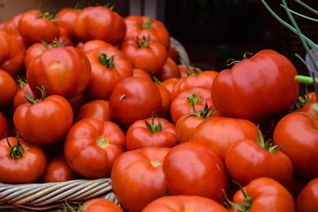 помидоры томаты памідоры таматы
