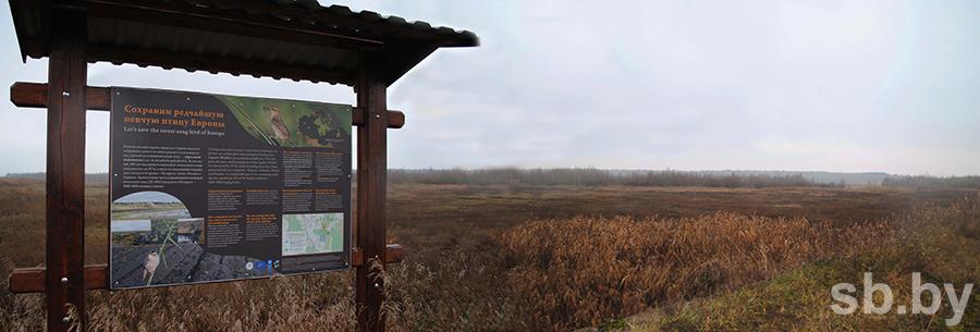 болота торфяники / Месторождение «Докудовское» второе дыхание получит по технологии ускоренного восстановления болот.
