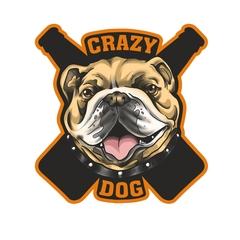 Бар Crazy Dog